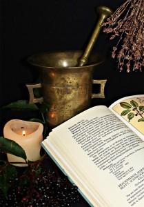 Plantas medicinales propiedades. Imagen Alquimia.