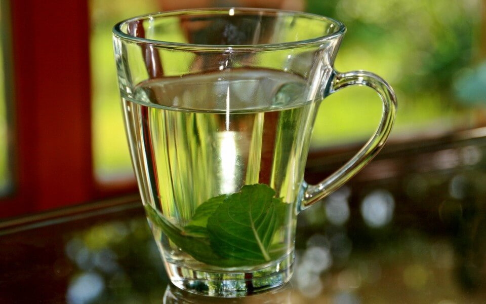Infusion de albahaca, vaso de vidrio con infusion hojas de menta, notas naturales