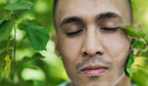 las plantas medicinales son remedios naturales bruxismo que ayudan a aliviar los síntomas