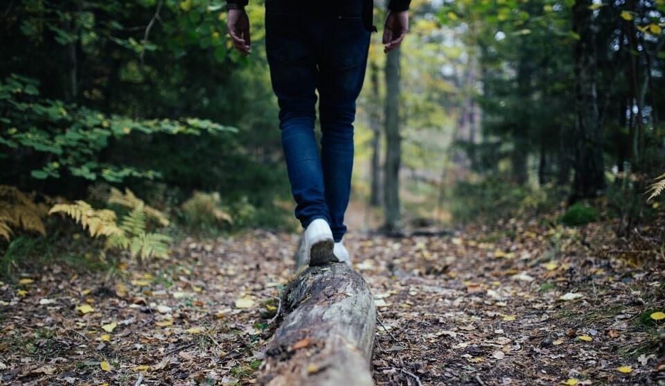 Aromaterapia y propiedades aceites esenciales. Imagen hombre caminando en un bosque