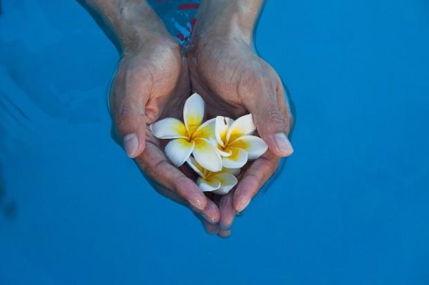 aceites esenciales indispensables. Imagen manos en agua con flores