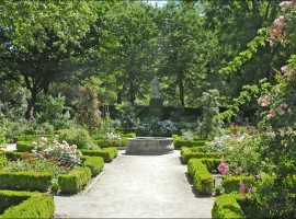 jardin botanico, vegetacion, notas naturales