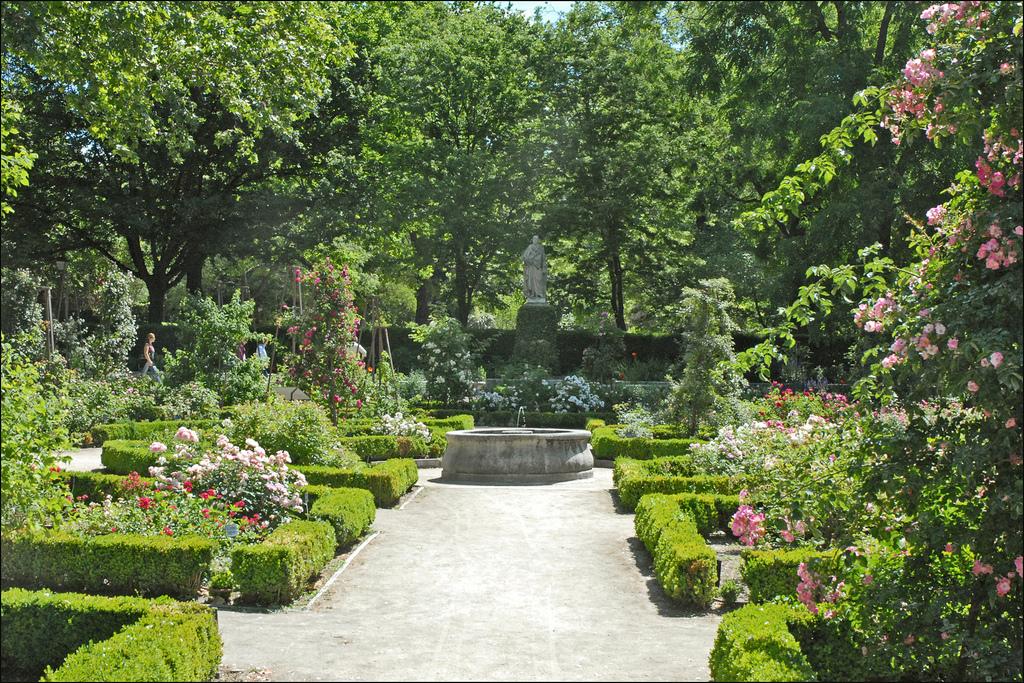 Jardines bot nicos con plantas medicinales en espa a for Plantas de un jardin botanico