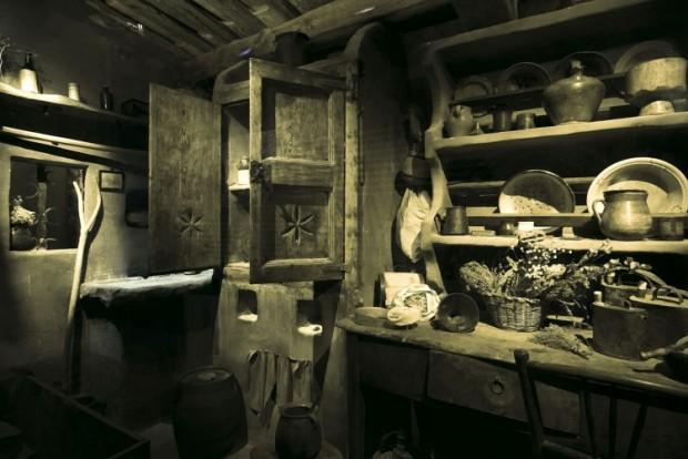 Museo plantas medicinales, trementinaires, trementina, plantas aromaticas, exposicion