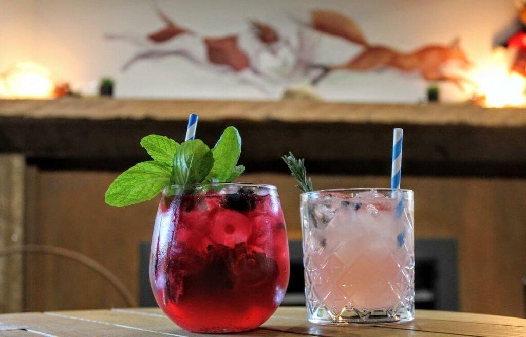agua aromática en hierbas y frutas