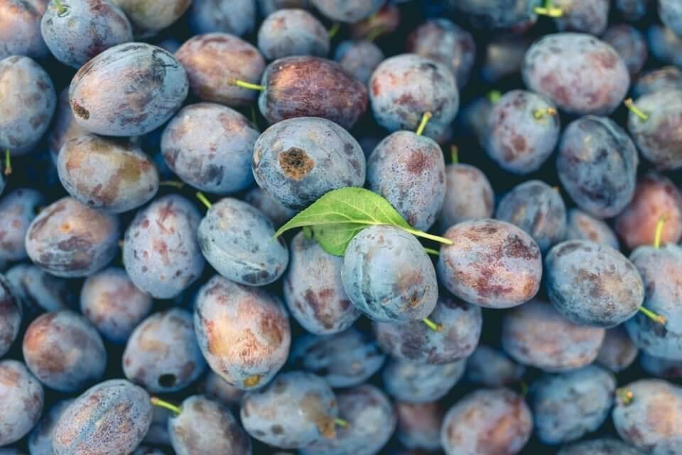 beneficios comer ciruelas fruta temporada
