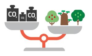 Huella de carbono, bascula, arboles, consumos, co2
