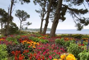 Jardines de Cap Roig @ Calella de Palafrugell | Cataluña | España