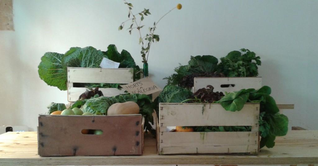 SlowMov Barcelona, Cestas de la Colmena, notas naturales, fruta, verdura, cestas madera