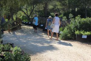 Jardin botanico medicinal, personas, vegetacion, notas naturales