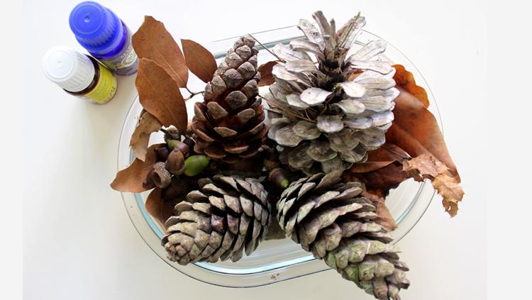 ambientadores naturales, bosque, cono de pino, hojas secas, aceite esencial, notas naturales, otoño