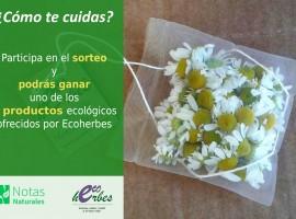 Sorteo herbolarios barcelona, manzanilla, infusion, cartel, sorteo