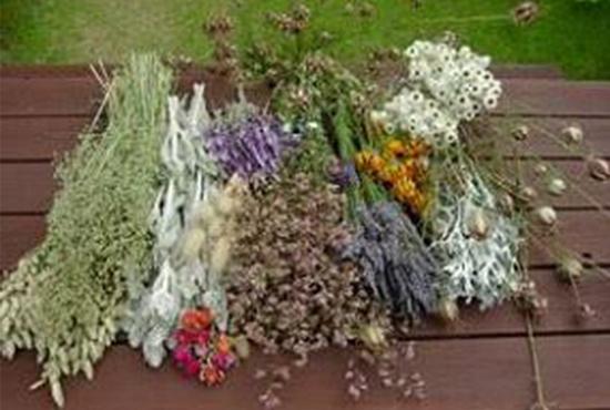 Inscripcion Decorar Con Plantas Para Las Fiestas Notas Naturales - Plantas-secas-decoracion