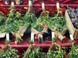 plantas atomósfera navideña, ramilletes suerte, muerdago, brujas, notas naturales