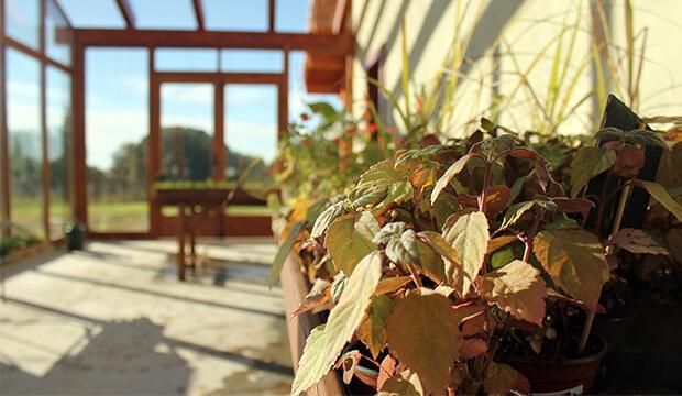 Parques de aromas, invernadero, parc de les olors del serrat, notas naturales, plantas aromaticas