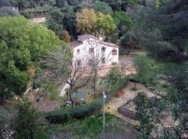 Jardin botanic historic barcelona, notas naturales