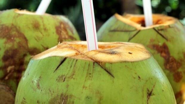 propiedades coco, coco verde, agua de coco, notas naturales