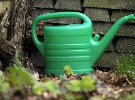 diseño de jardines, regadora, jardin invierno