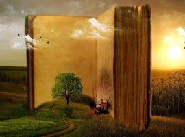 libros plantas medicinales, notas naturales
