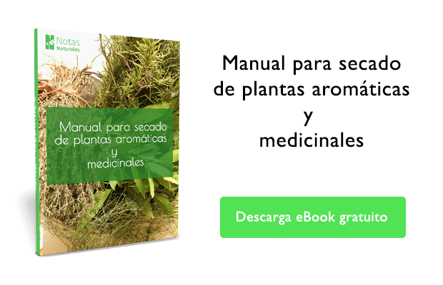 plantas medicinales y fitoterapia, ebook gratis plantas medicinales, notasnaturales