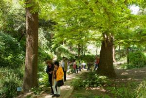 Visita al Jardin botanico histórico de Barcelona @ Jardí Botànic Històric | Barcelona | Catalunya | España