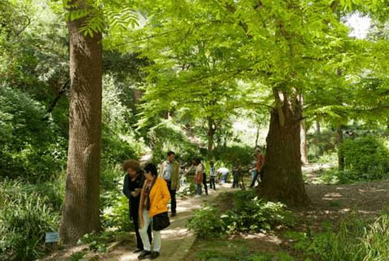visita jardin botanico barcelona, notasnaturales