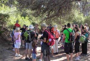 Excursión guiada para identificar plantas @ Parque Natural de Sant Llorenç del Munt i l'Obac  | Catalunya | España