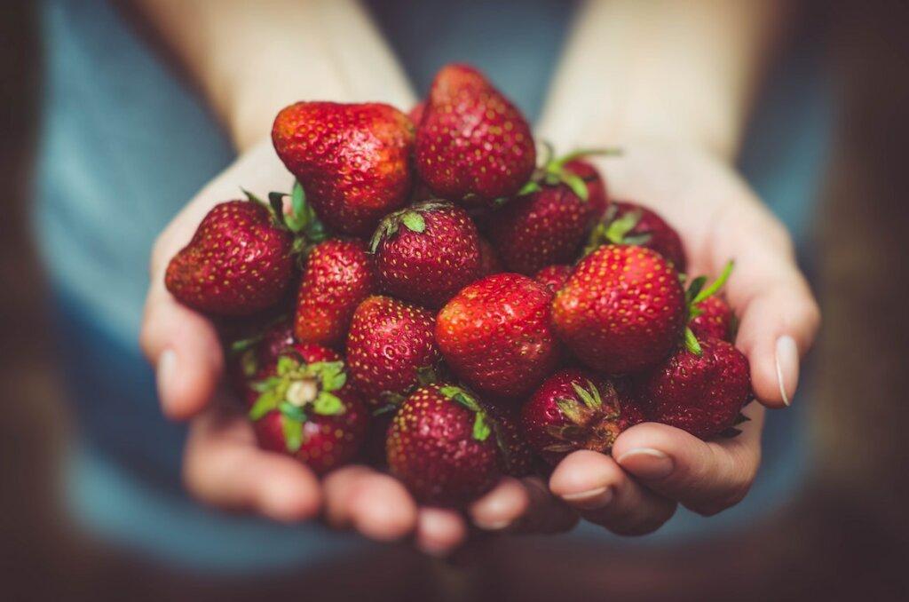 Manos que ofrecen fresas, unas frutas ideales para una alimentación saludable