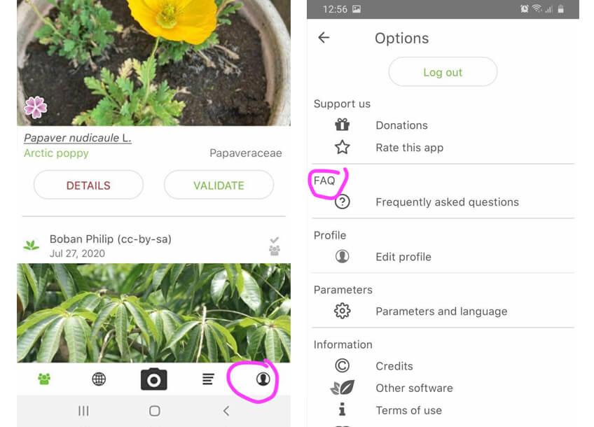 captura de pantalla ajustes plantnet