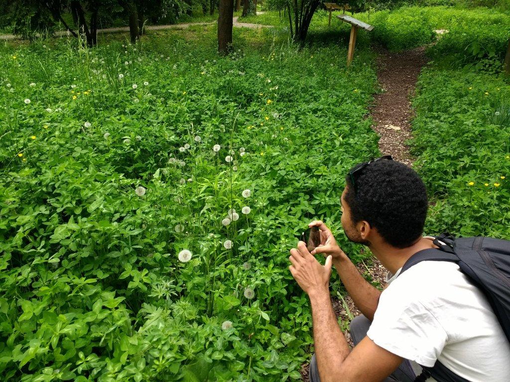 ¿Qué ver en Bucarest y a las afueras? Tips para amantes de la naturaleza