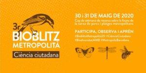 Tercer Bioblitz metropolitano @ Barcelona | Barcelona | Cataluña | España