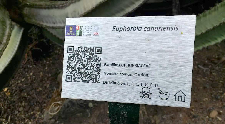 jardin botanico de plantas medicinales