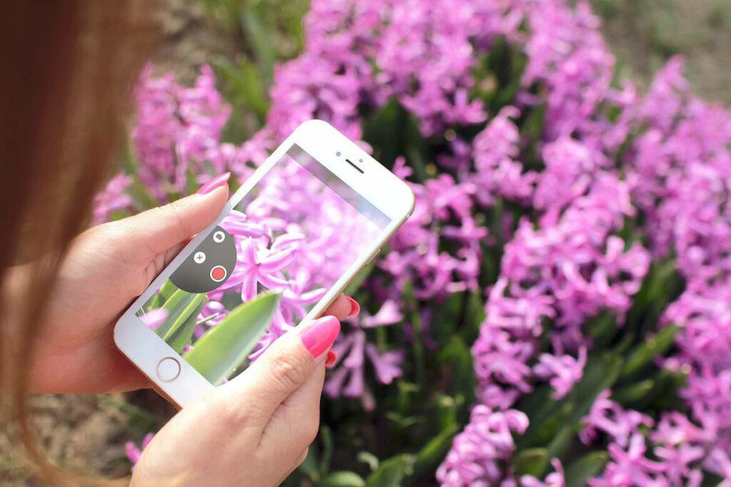 mujer sacando fotos de flores con un smartphone reacondicionado