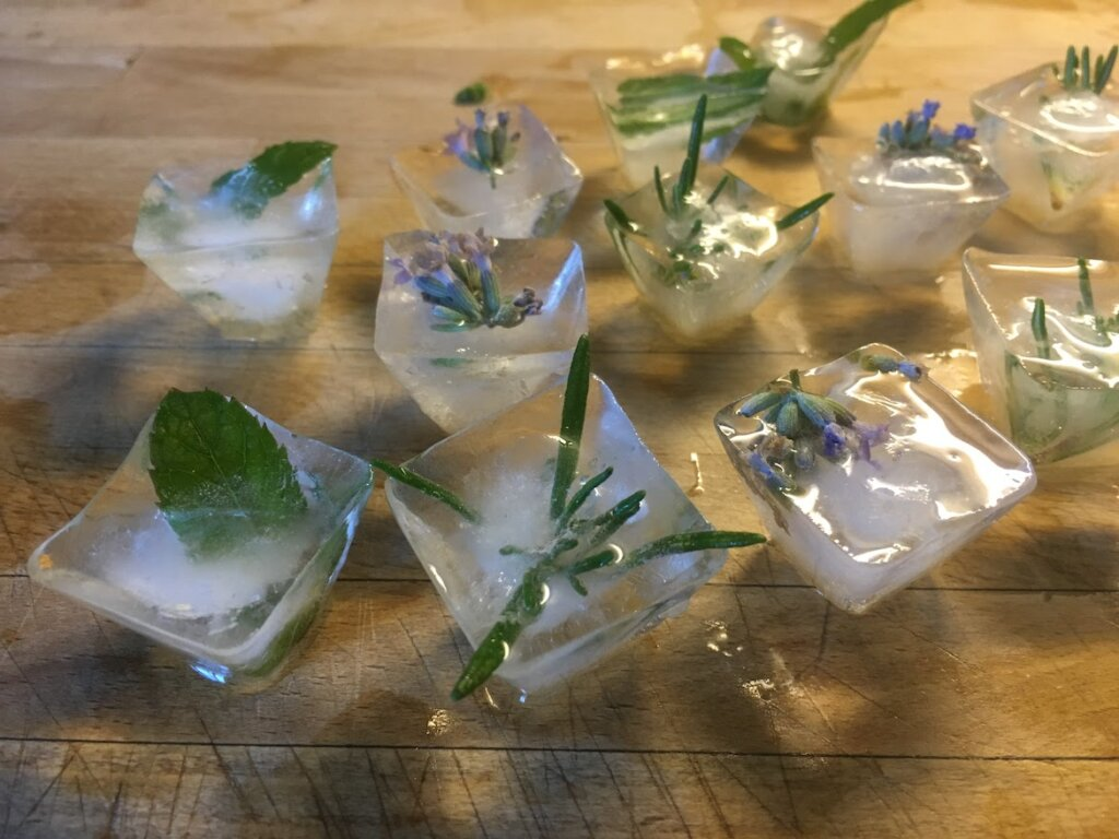 cubitos de hielo con hierbas aromáticas para saborizar el agua y las bebidas