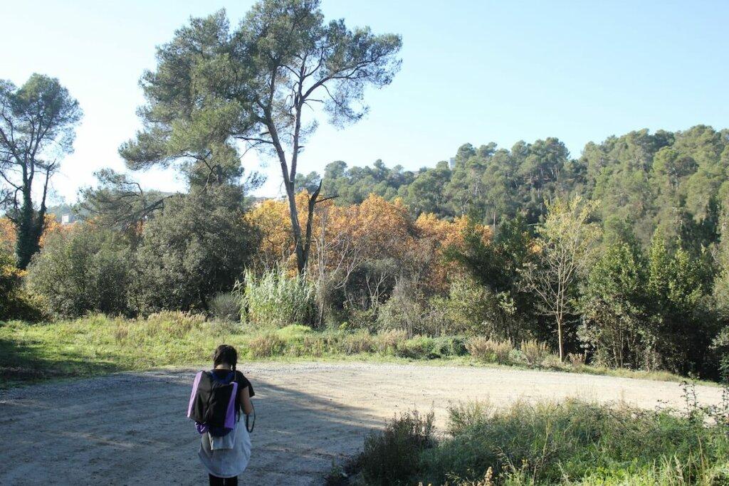 mujer pasea cerca del pantano de Vallvidrera, una de las rutas senderismo cerca de Barcelona
