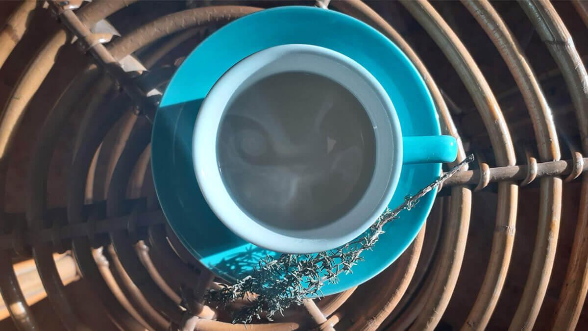 una taza de infusión de tomillo caliente, notasnaturales.com