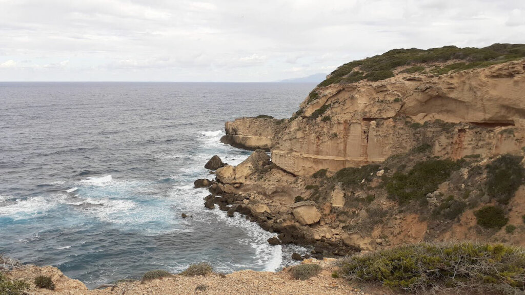 acantilados capo mannu, penisola del sinis cerdeña, notas naturaleas
