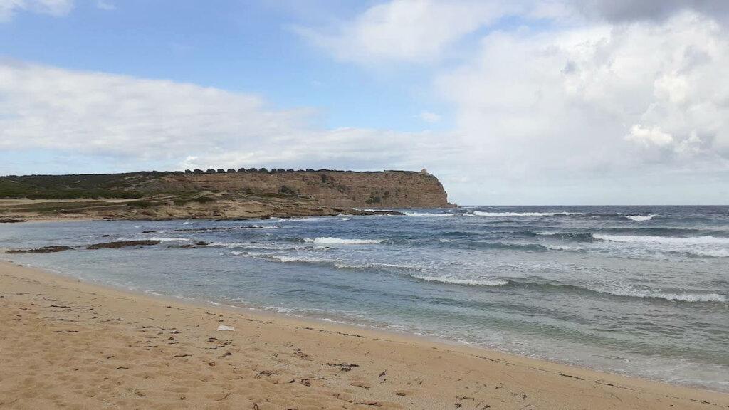 capo mannu, peninsula de sinis cerdeña, notas naturaleas