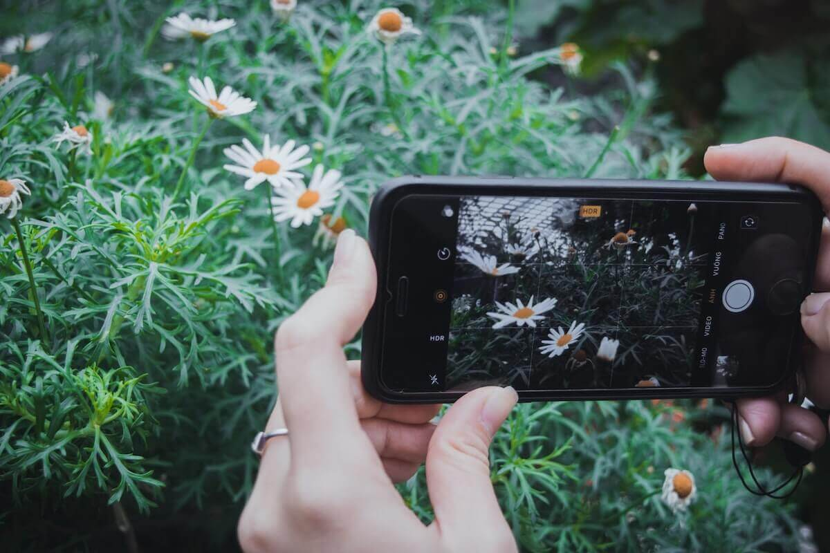 manos mujer sujetan móvil para sacar fotos de plantas e identificarlas con la app plantnet