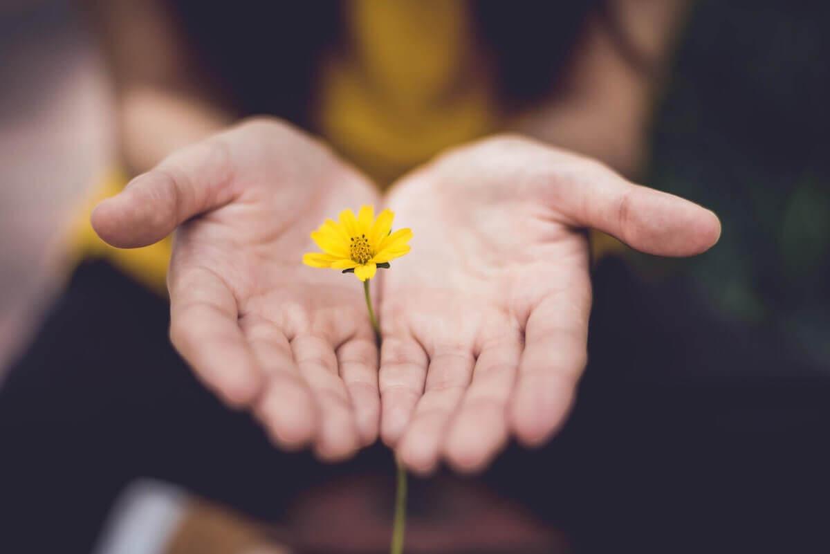 chica regala una flor como simbolo de amor por la naturaleza