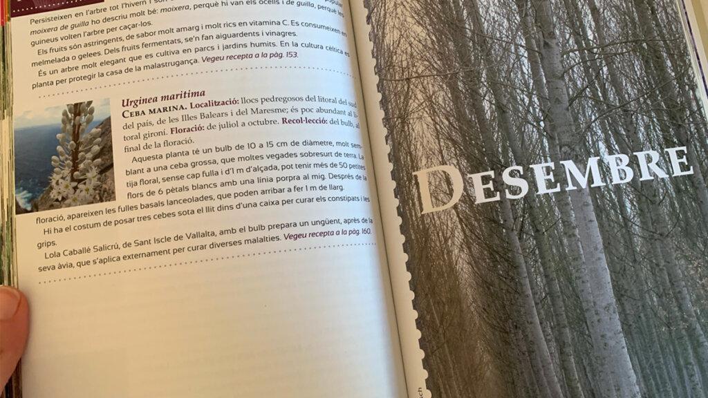 detalles libro guía del recolector