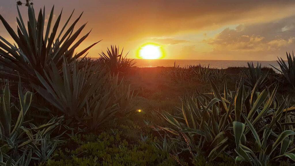 puesta del sol peninsula de sinis cerdeña, notas naturaleas