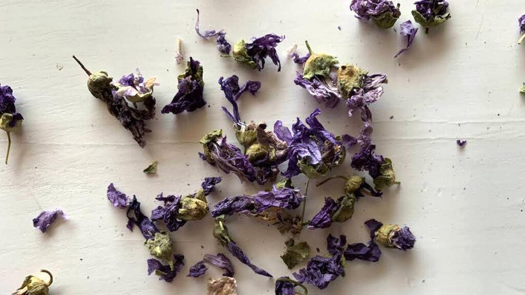 flores de malva secos para tisanas