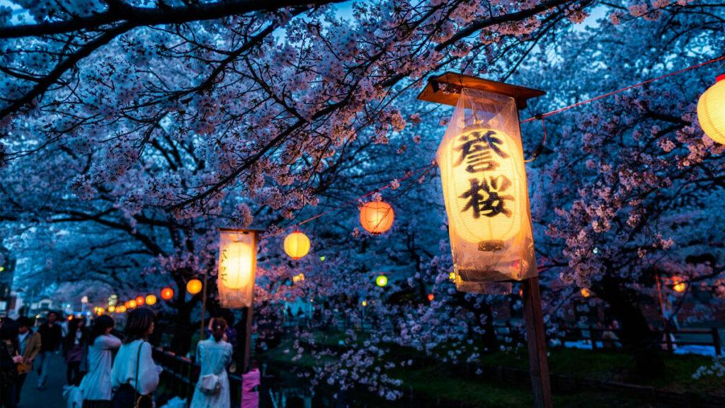 festival de hanami por la noche