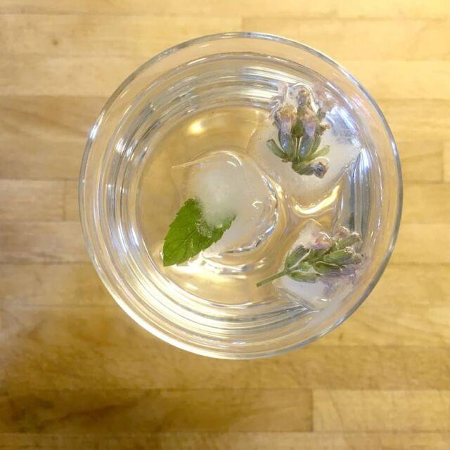 ⠀ ¡¡Agua con hielo, por favor!!⠀ ⠀ ⠀ Y algunas hierbas aromáticas a ser posible🌿😉⠀ ⠀ Esta semana he publicado un nuevo artículo en el blog con consejos y algunas ideas para hacer agua aromatizada en casa. Refrescante y natural. Los cubitos de hielo con aromáticas son súper fáciles de preparar y los puedes aprovechar en tus bebidas y cócteles.⠀  Copia y pega este enlace en tu navegador 👉 https://www.notasnaturales.com/hacer-aguas-saborizadas-recetas/ o accede al blog desde la bio. ⠀ @hellocreatividad el reto de este mes no me lo podía perder 🙌 🧊⠀ ⠀ ⠀ ⠀ ⠀ ⠀ ⠀ #viveelveranoHC #hielo #aromaticas #notasnaturalesblog #infusionfria #refrescosnaturales #recetassaludables #recetassanas #tomaragua #bienestar #hidratarse #aguasaborizada #aguasabotizadas #natural #agua #drink #drinks #aguafrutal #hidrátate #conhieloHC ⠀ ⠀